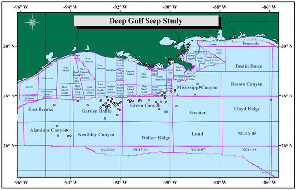 Deepwater Gulf of Mexico Seep Study — Phases I and II
